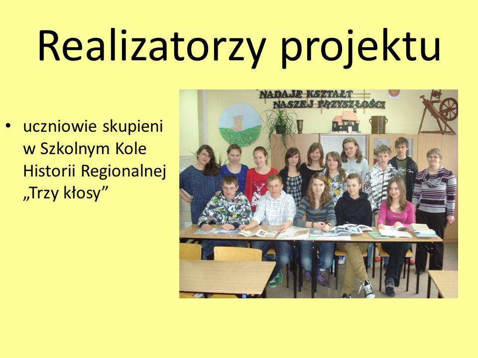 Termin realizacji projektu wrzesień 2010 - kwiecień 2011
