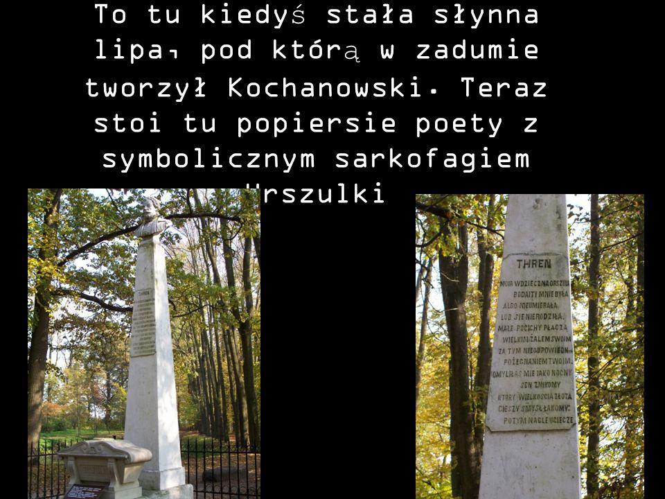 To tu kiedyś stała słynna lipa, pod którą w zadumie tworzył Kochanowski. Teraz stoi tu popiersie poety z symbolicznym sarkofagiem Urszulki