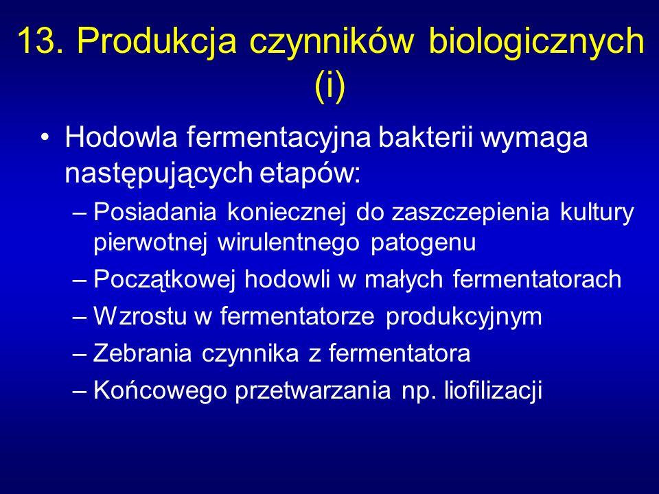 13. Produkcja czynników biologicznych (i) Hodowla fermentacyjna bakterii wymaga następujących etapów: –Posiadania koniecznej do zaszczepienia kultury