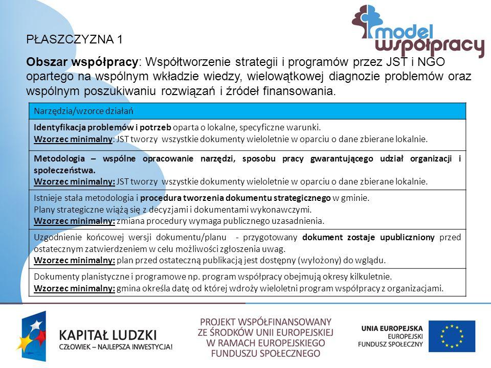 PŁASZCZYZNA 1 Obszar współpracy: Współtworzenie strategii i programów przez JST i NGO opartego na wspólnym wkładzie wiedzy, wielowątkowej diagnozie problemów oraz wspólnym poszukiwaniu rozwiązań i źródeł finansowania.