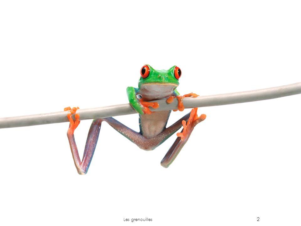 2 Les grenouilles