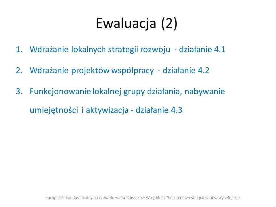 Ewaluacja (2) 1.Wdrażanie lokalnych strategii rozwoju - działanie 4.1 2.Wdrażanie projektów współpracy - działanie 4.2 3.Funkcjonowanie lokalnej grupy działania, nabywanie umiejętności i aktywizacja - działanie 4.3 Europejski Fundusz Rolny na rzecz Rozwoju Obszarów Wiejskich: Europa inwestująca w obszary wiejskie