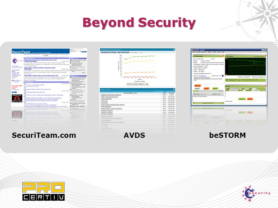 Beyond Security AVDSbeSTORMSecuriTeam.com