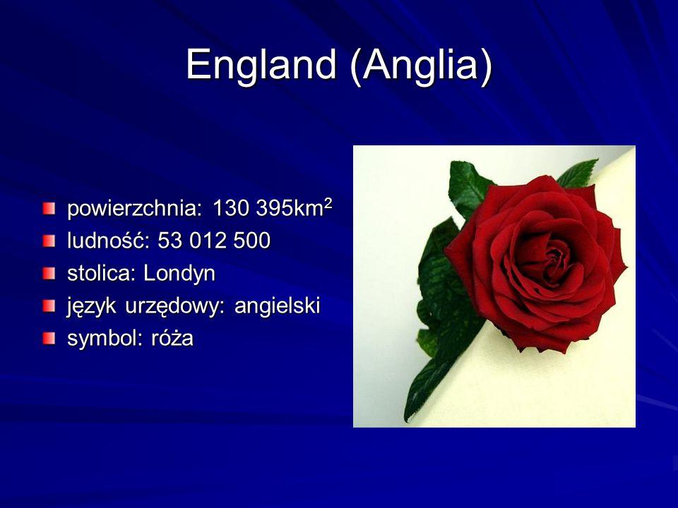 England (Anglia) powierzchnia: 130 395km 2 ludność: 53 012 500 stolica: Londyn język urzędowy: angielski symbol: róża