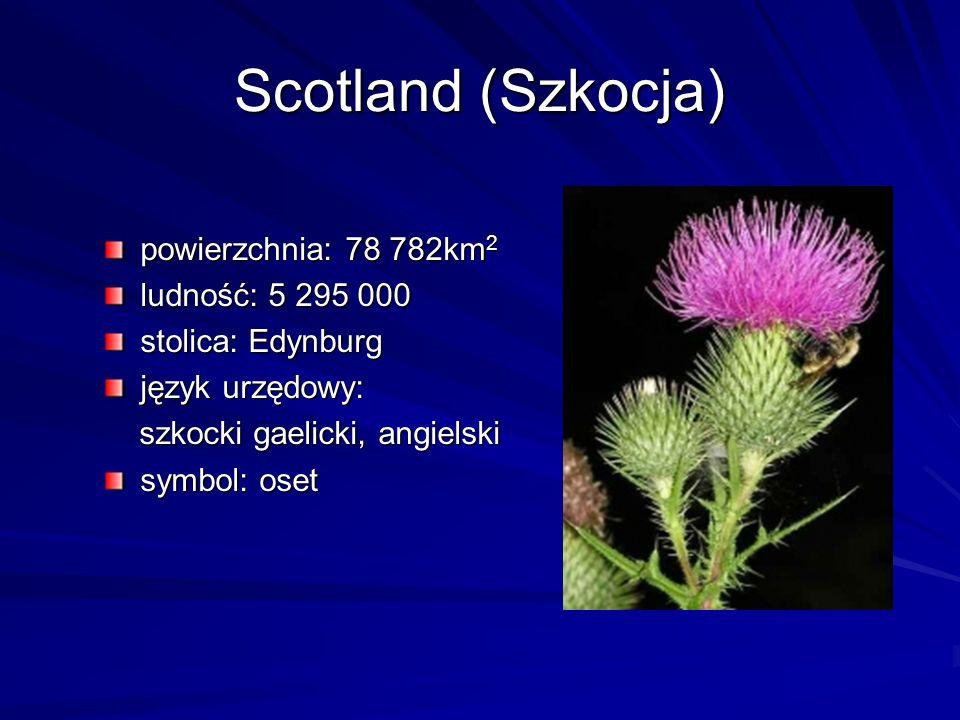 Scotland (Szkocja) powierzchnia: 78 782km 2 ludność: 5 295 000 stolica: Edynburg język urzędowy: szkocki gaelicki, angielski szkocki gaelicki, angiels