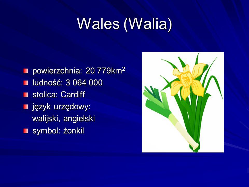 Wales (Walia) powierzchnia: 20 779km 2 ludność: 3 064 000 stolica: Cardiff język urzędowy: walijski, angielski walijski, angielski symbol: żonkil