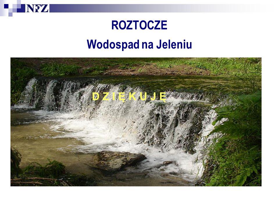 ROZTOCZE Wodospad na Jeleniu D Z I Ę K U J Ę