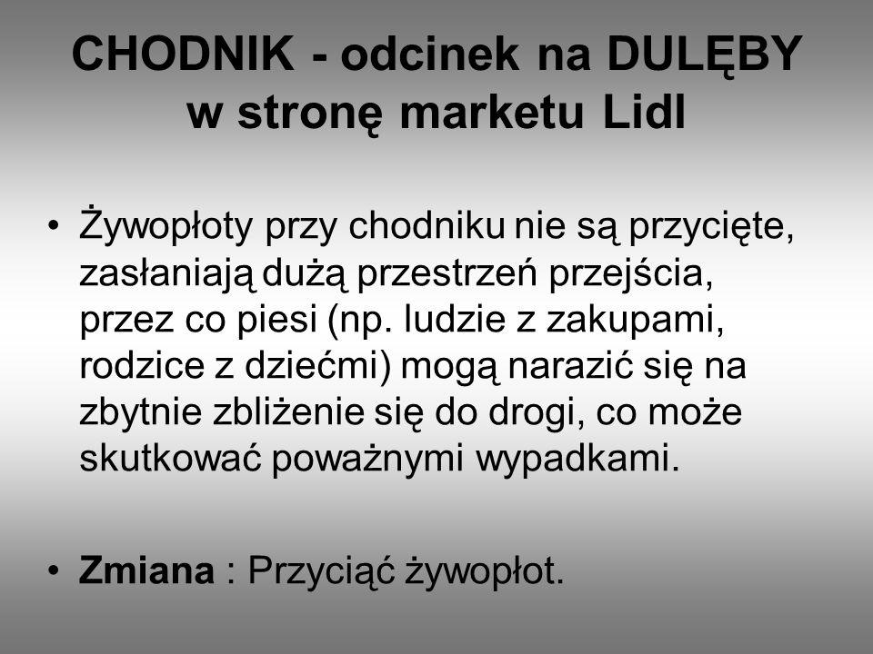 CHODNIK - odcinek na DULĘBY w stronę marketu Lidl Żywopłoty przy chodniku nie są przycięte, zasłaniają dużą przestrzeń przejścia, przez co piesi (np.