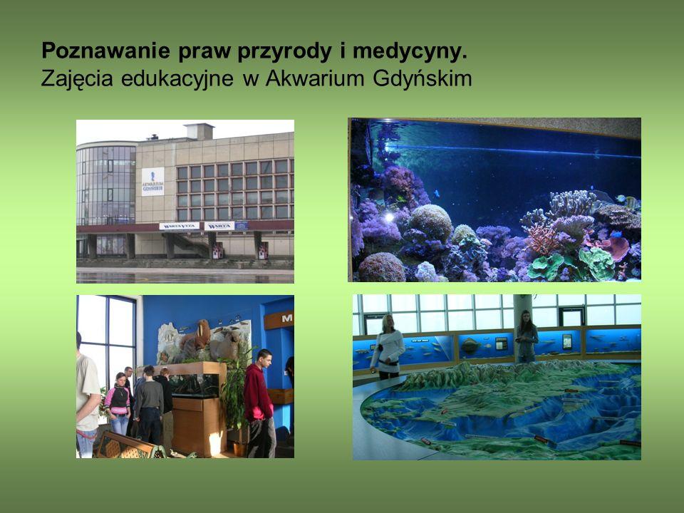 Poznawanie praw przyrody i medycyny. Zajęcia edukacyjne w Akwarium Gdyńskim