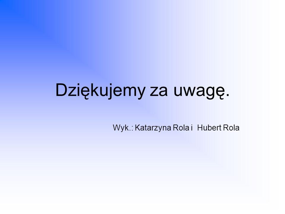 Dziękujemy za uwagę. Wyk.: Katarzyna Rola i Hubert Rola