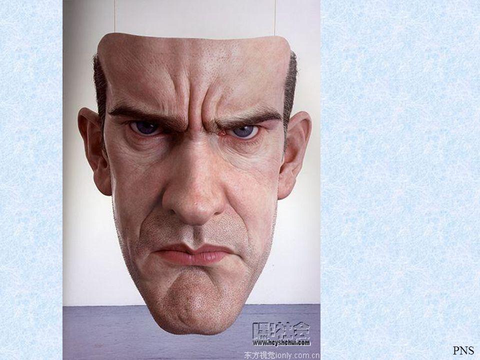 PNS Rzeźby Rona Muecka Ron Mueck (ur. 1958) - australijski hiperrealistyczny rzeźbiarz pracujący obecnie w Wielkiej Brytanii. Swoją karierę rozpoczął