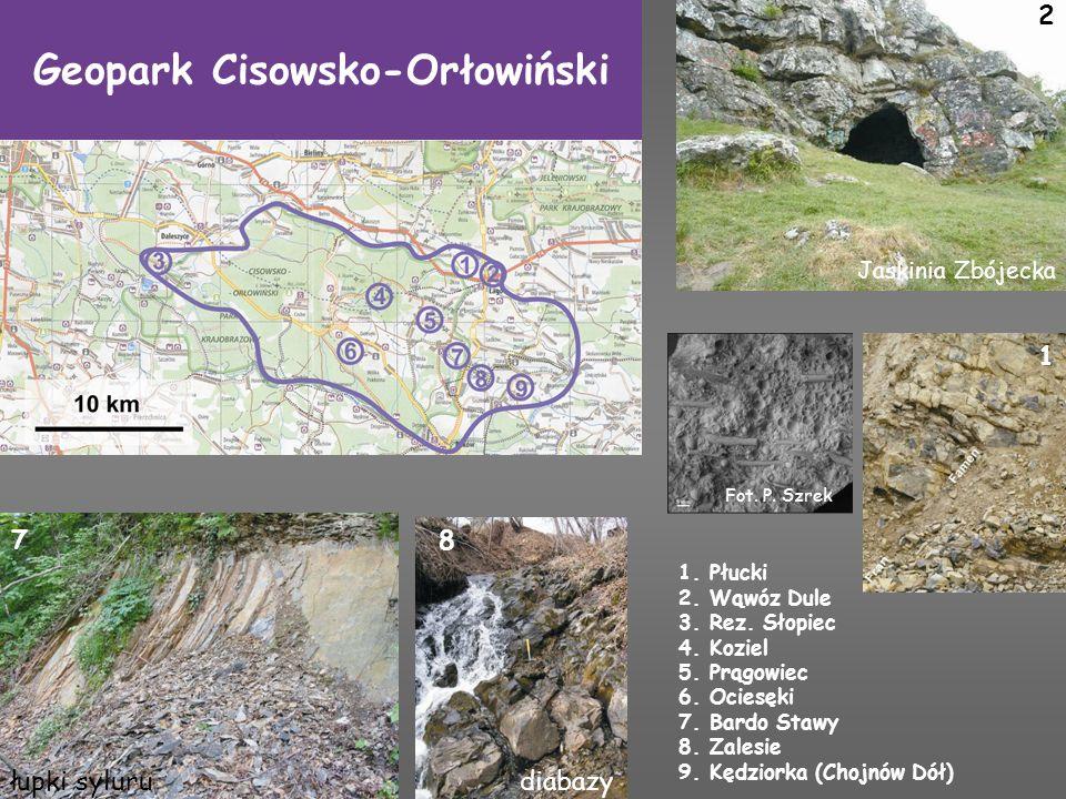 Geopark Cisowsko-Orłowiński 1. Płucki 2. Wąwóz Dule 3. Rez. Słopiec 4. Koziel 5. Prągowiec 6. Ociesęki 7. Bardo Stawy 8. Zalesie 9. Kędziorka (Chojnów