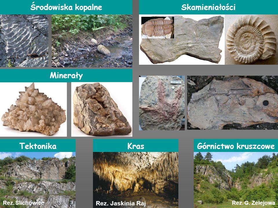 Rez. Jaskinia Raj Rez. G. ZelejowaRez. Ślichowice Środowiska kopalne Minerały Kras Skamieniałości Górnictwo kruszcoweTektonika