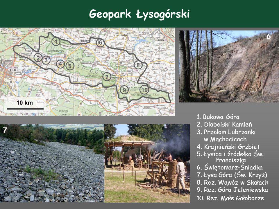 Geopark Kraina Tetrapoda i Skamieniałych Wydm 1.Rez.