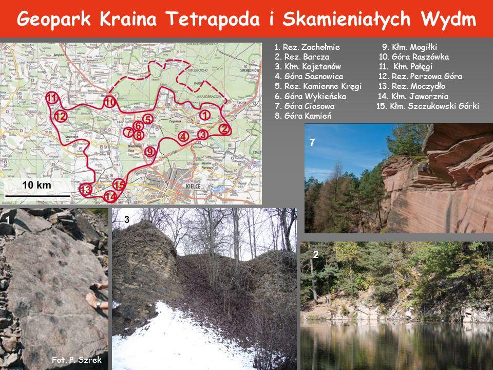 Geopark Cisowsko-Orłowiński 1.Płucki 2. Wąwóz Dule 3.