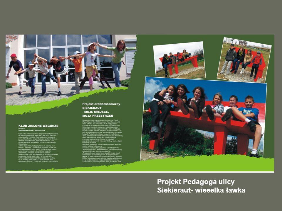 Projekt Pedagoga ulicy Siekieraut- wieeelka ławka