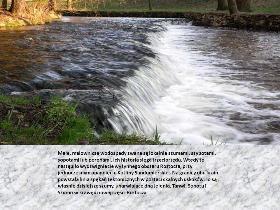 Małe, malownicze wodospady zwane są lokalnie szumami, szypotami, sopotami lub porohami. Ich historia sięga trzeciorzędu. Wtedy to nastąpiło wydźwignie
