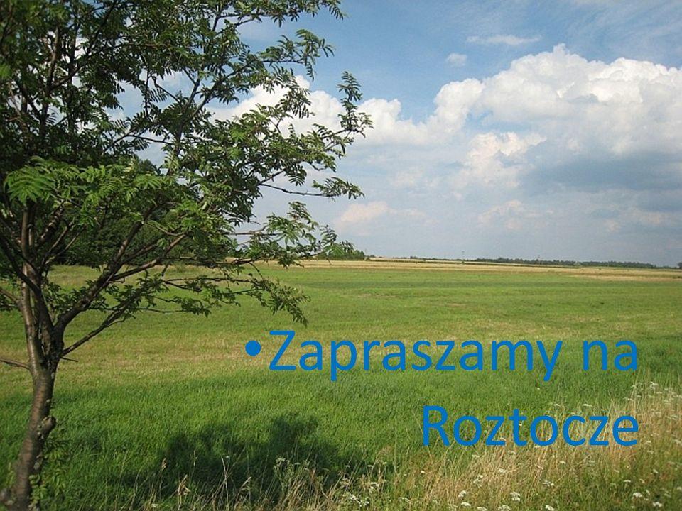 Roztocze Roztocze to kraina niezwyk ł a, pe ł na s ł o ń ca i nieska ż onej przyrody.