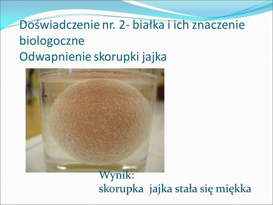 Doświadczenie nr. 2- białka i ich znaczenie biologoczne Odwapnienie skorupki jajka Wynik: skorupka jajka stała się miękka