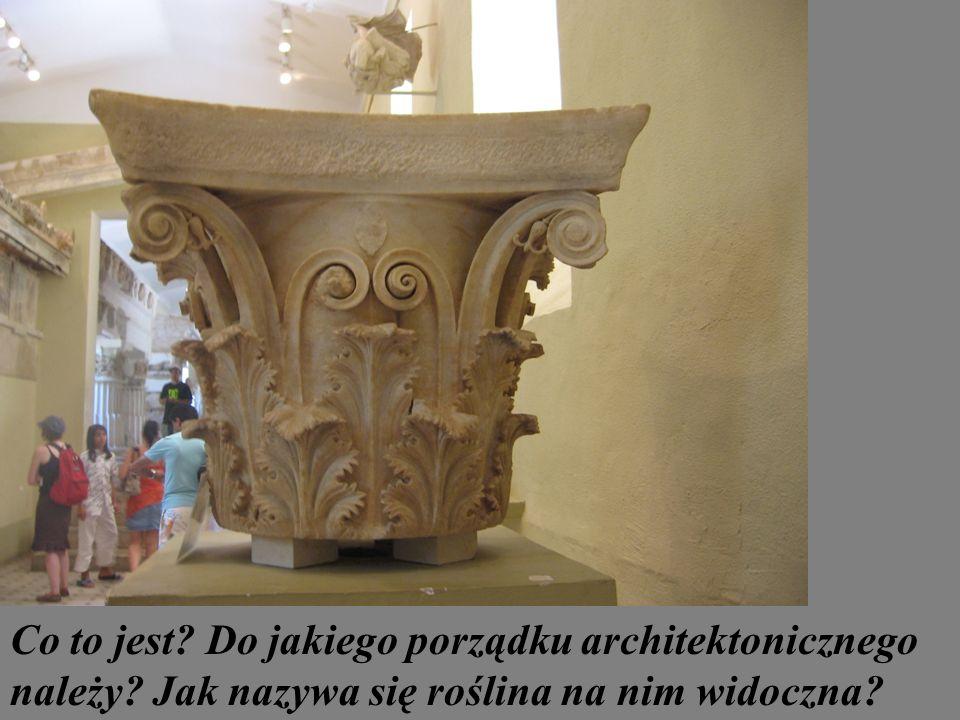 Co to jest? Do jakiego porządku architektonicznego należy? Jak nazywa się roślina na nim widoczna?