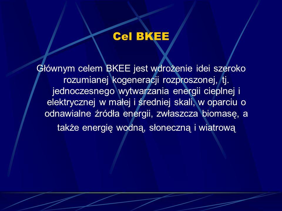 Cel BKEE Głównym celem BKEE jest wdrożenie idei szeroko rozumianej kogeneracji rozproszonej, tj. jednoczesnego wytwarzania energii cieplnej i elektryc