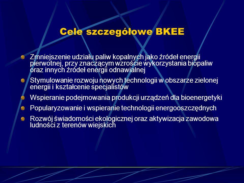 Cele szczegółowe BKEE Zmniejszenie udziału paliw kopalnych jako źródeł energii pierwotnej, przy znaczącym wzroście wykorzystania biopaliw oraz innych