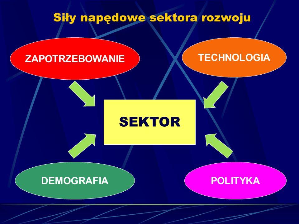 Siły napędowe sektora rozwoju ZAPOTRZEBOWANIE TECHNOLOGIA SEKTOR DEMOGRAFIAPOLITYKA