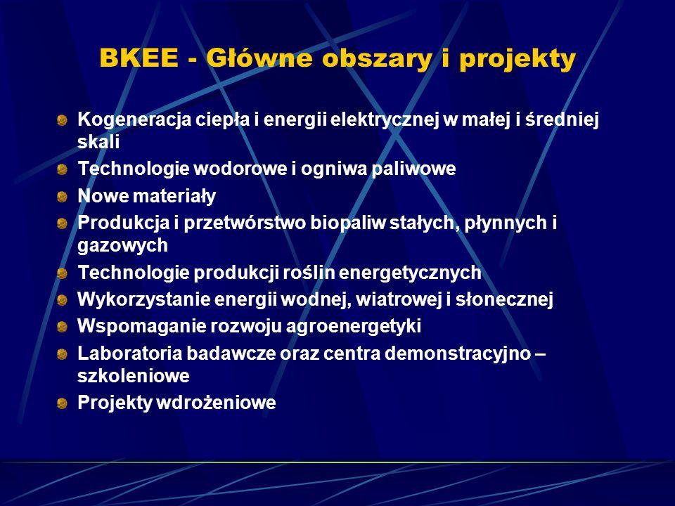 BKEE - Główne obszary i projekty Kogeneracja ciepła i energii elektrycznej w małej i średniej skali Technologie wodorowe i ogniwa paliwowe Nowe materi