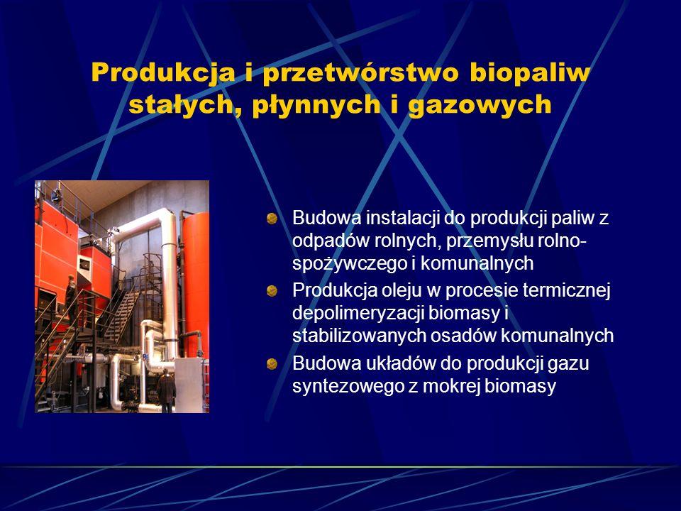 Produkcja i przetwórstwo biopaliw stałych, płynnych i gazowych Budowa instalacji do produkcji paliw z odpadów rolnych, przemysłu rolno- spożywczego i