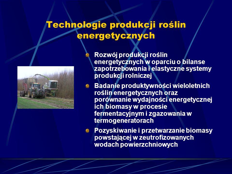 Technologie produkcji roślin energetycznych Rozwój produkcji roślin energetycznych w oparciu o bilanse zapotrzebowania i elastyczne systemy produkcji