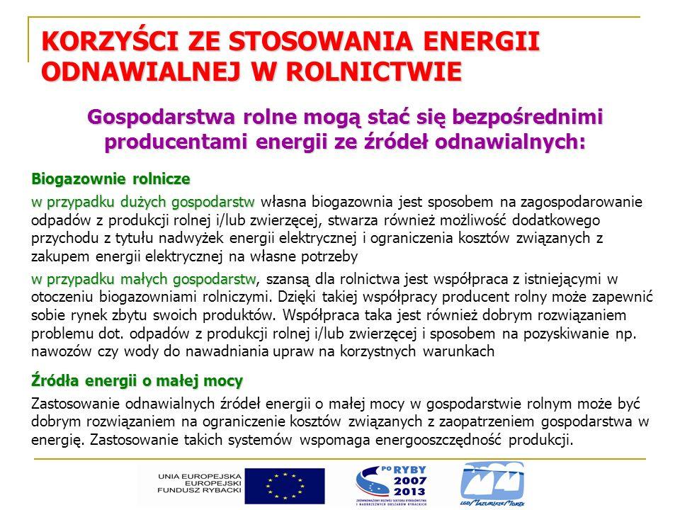 KORZYŚCI ZE STOSOWANIA ENERGII ODNAWIALNEJ W ROLNICTWIE Gospodarstwa rolne mogą stać się bezpośrednimi producentami energii ze źródeł odnawialnych: Bi