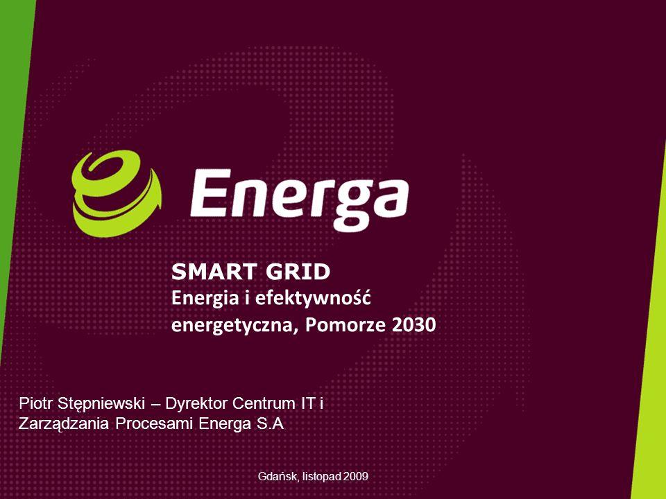 SMART GRID Energia i efektywność energetyczna, Pomorze 2030 Piotr Stępniewski – Dyrektor Centrum IT i Zarządzania Procesami Energa S.A Gdańsk, listopa