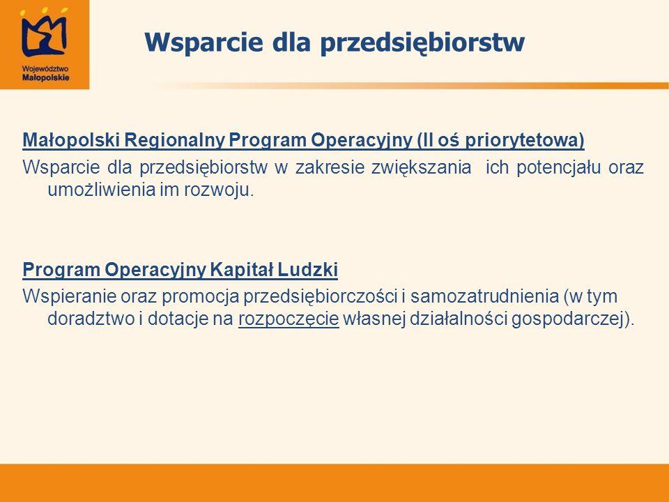 Wsparcie dla przedsiębiorstw Małopolski Regionalny Program Operacyjny (II oś priorytetowa) Wsparcie dla przedsiębiorstw w zakresie zwiększania ich potencjału oraz umożliwienia im rozwoju.