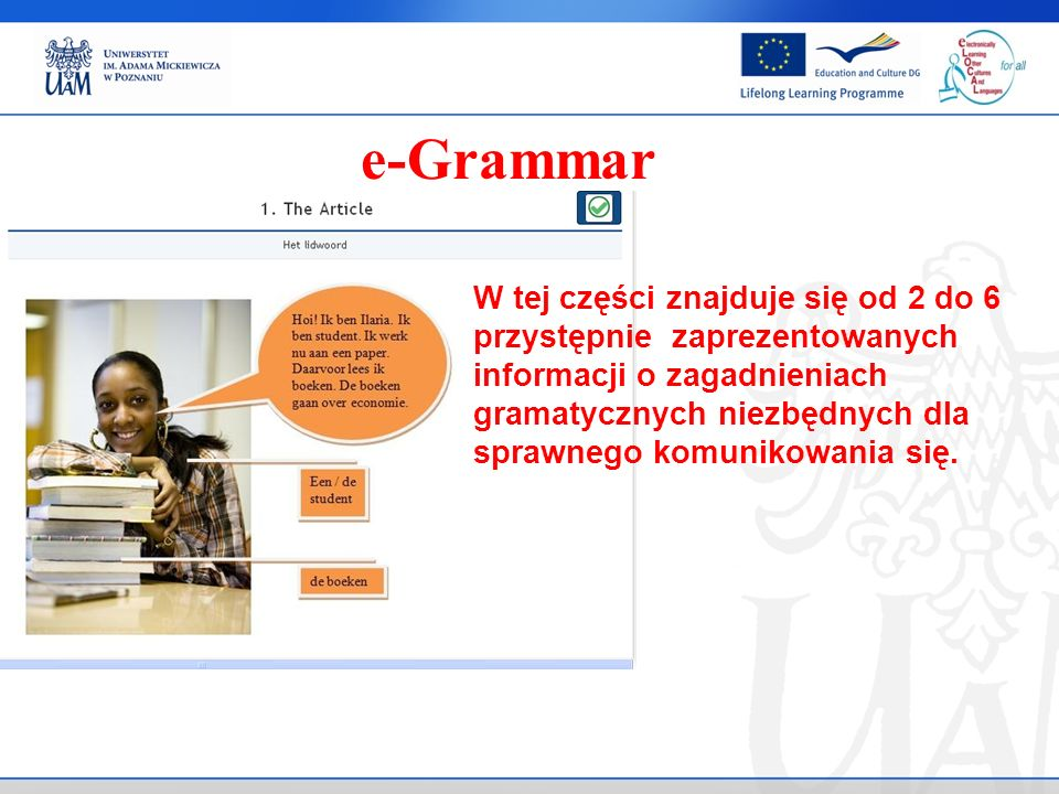 e-Grammar W tej części znajduje się od 2 do 6 przystępnie zaprezentowanych informacji o zagadnieniach gramatycznych niezbędnych dla sprawnego komunikowania się.