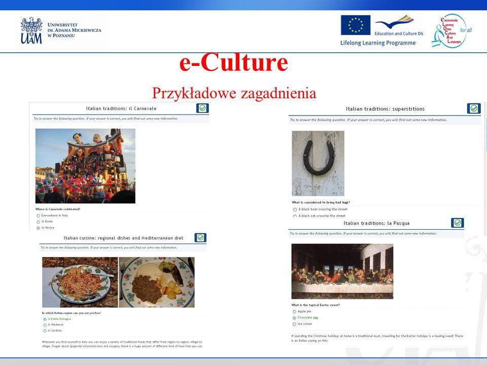 . Przykładowe zagadnienia e-Culture