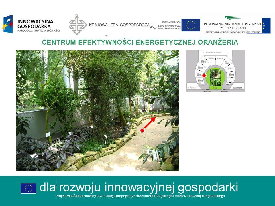 dla rozwoju innowacyjnej gospodarki Projekt współfinansowany przez Unię Europejską ze środków Europejskiego Funduszu Rozwoju Regionalnego CENTRUM EFEKTYWNOŚCI ENERGETYCZNEJ OGÓLNA KONCEPCJA dla rozwoju innowacyjnej gospodarki Projekt współfinansowany przez Unię Europejską ze środków Europejskiego Funduszu Rozwoju Regionalnego