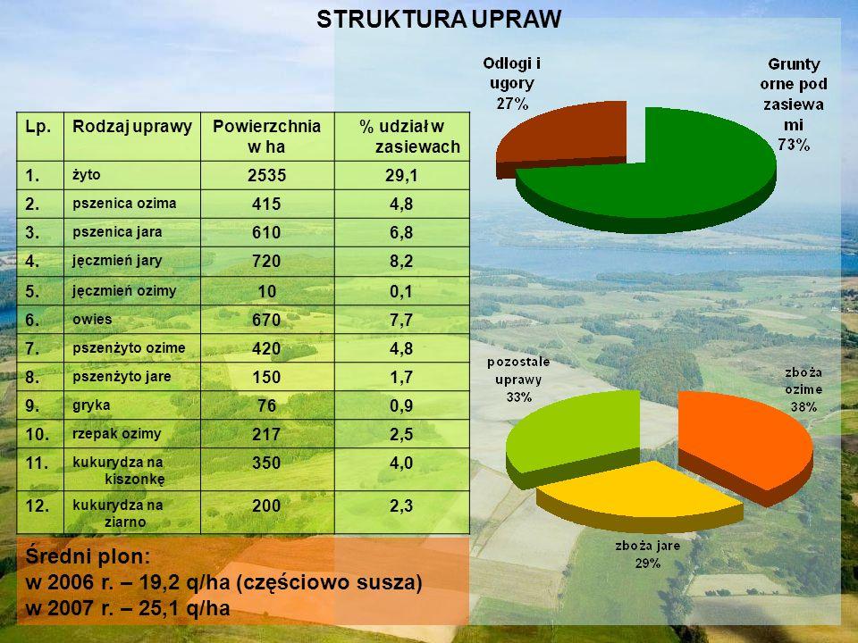 Lp.Rodzaj uprawyPowierzchnia w ha % udział w zasiewach 1. żyto 253529,1 2. pszenica ozima 4154,8 3. pszenica jara 6106,8 4. jęczmień jary 7208,2 5. ję