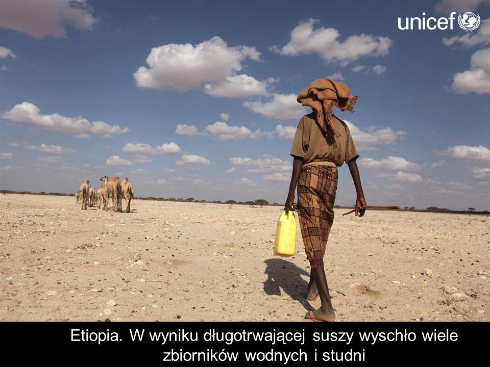 Etiopia. W wyniku długotrwającej suszy wyschło wiele zbiorników wodnych i studni