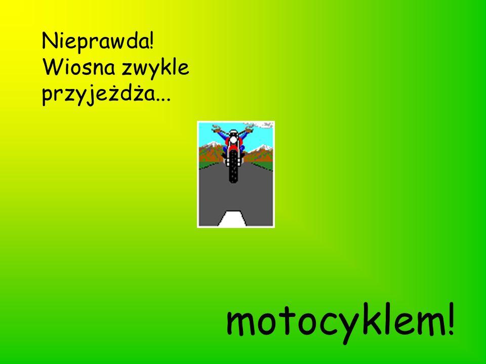 Nieprawda! Wiosna zwykle przyjeżdża... motocyklem!