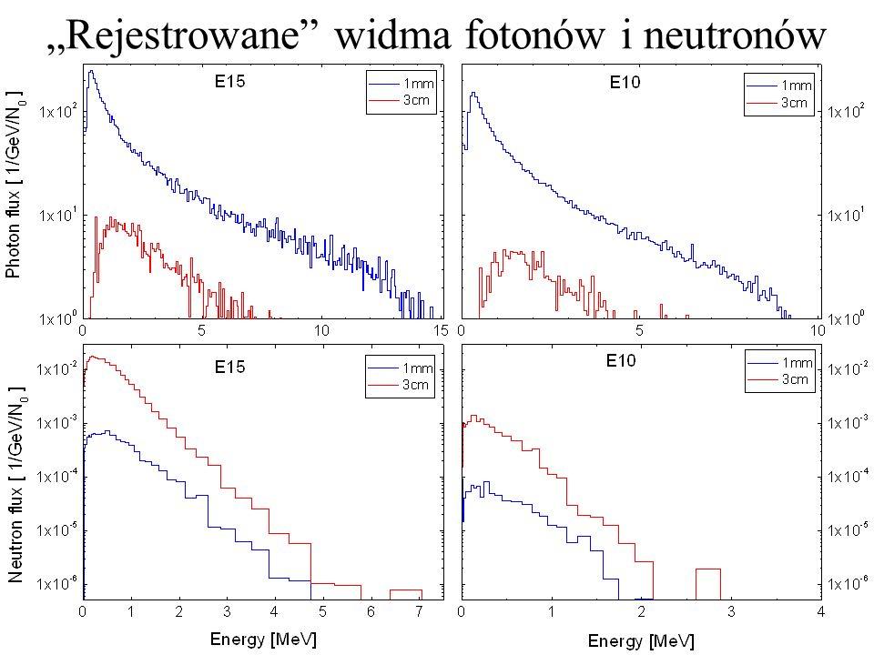 Rejestrowane widma fotonów i neutronów
