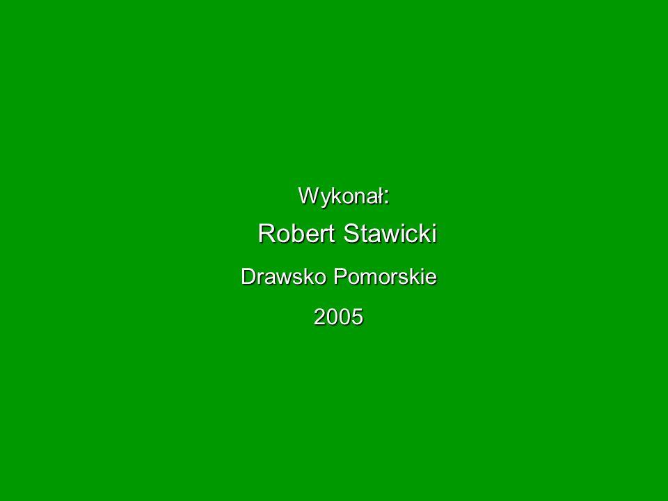 Wykonał : Robert Stawicki Drawsko Pomorskie 2005