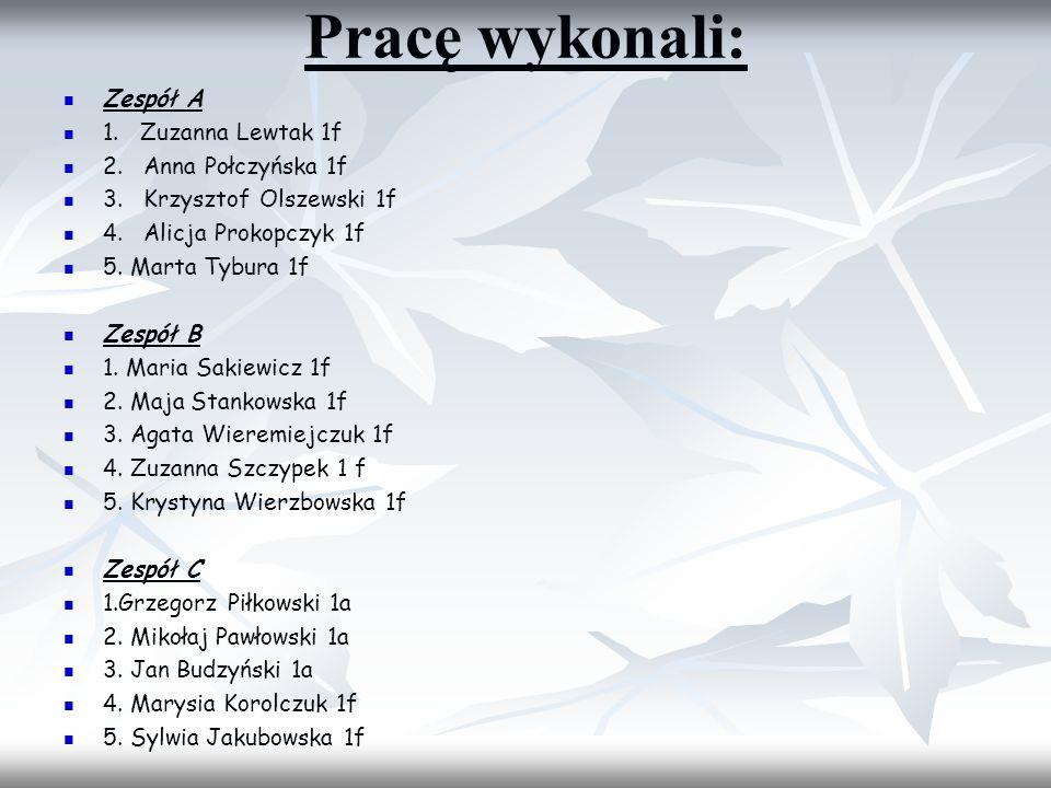 Pracę wykonali: Zespół A 1. Zuzanna Lewtak 1f 2. Anna Połczyńska 1f 3. Krzysztof Olszewski 1f 4. Alicja Prokopczyk 1f 5. Marta Tybura 1f Zespół B 1. M