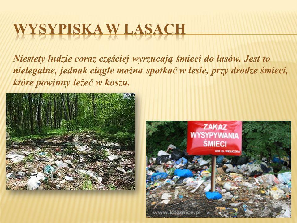 Niestety ludzie coraz częściej wyrzucają śmieci do lasów. Jest to nielegalne, jednak ciągle można spotkać w lesie, przy drodze śmieci, które powinny l