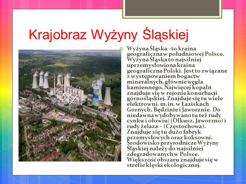 Ojcowski Park Narodowy Ojcowski Park Narodowy – jeden z 23 parków narodowych w Polsce, utworzony w 1956.
