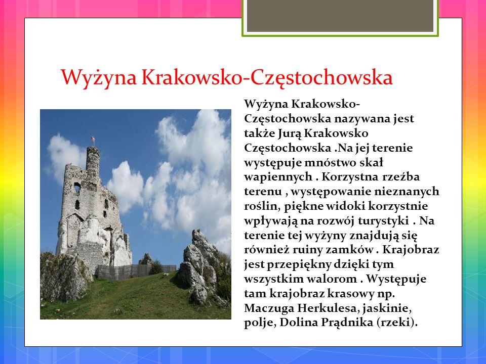 Roztoczański Park Narodowy Roztoczański Park Narodowy – położony w środkowo-wschodniej części Polski, na Roztoczu, utworzony 10 maja 1974 roku.