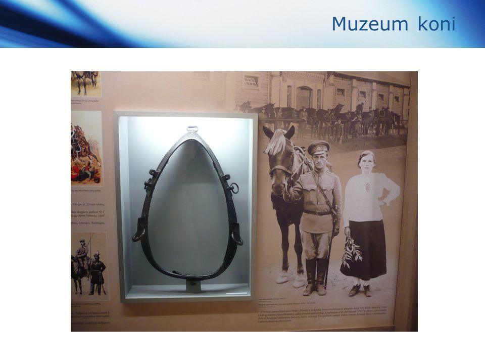 www.themegallery.com Company Logo Muzeum koni