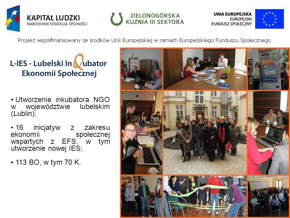 Utworzenie inkubatora NGO w województwie lubelskim (Lublin); 16 inicjatyw z zakresu ekonomii społecznej wspartych z EFS, w tym utworzenie nowej IES; 113 BO, w tym 70 K.