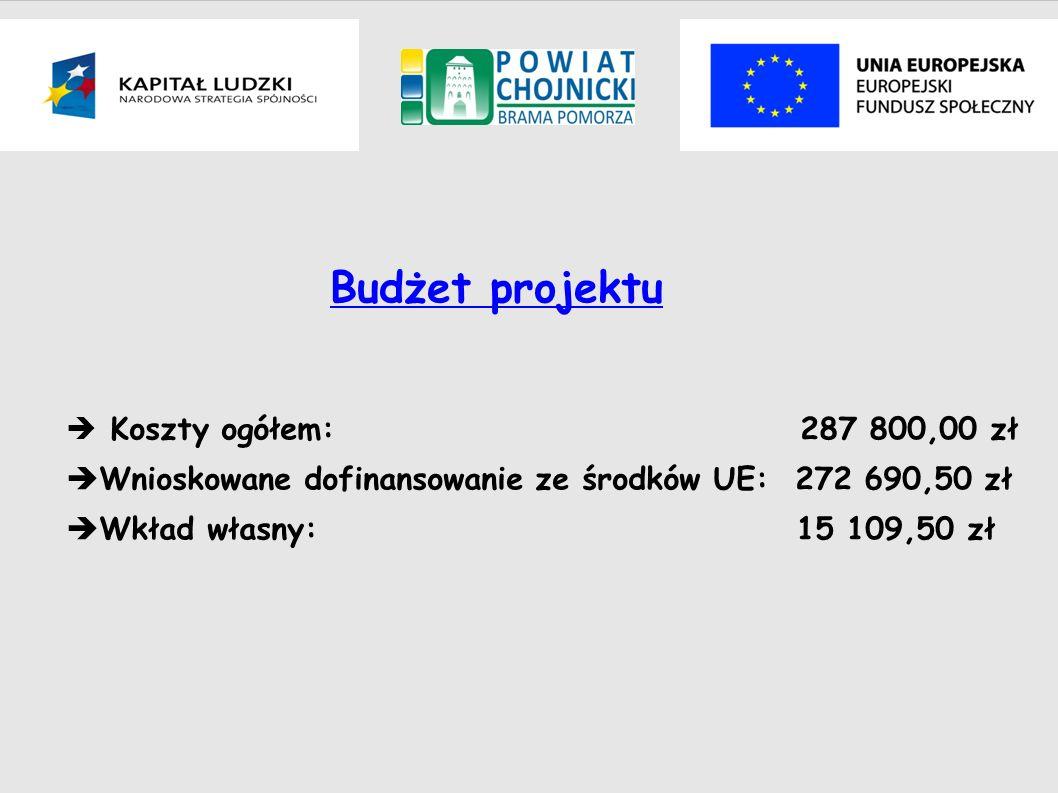 Budżet projektu Koszty ogółem: 287 800,00 zł Wnioskowane dofinansowanie ze środków UE: 272 690,50 zł Wkład własny: 15 109,50 zł