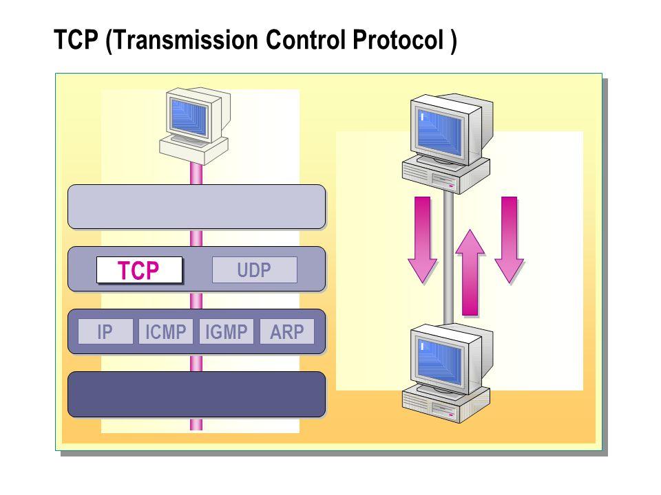 UDP (User Datagram Protocol) UDP TCP IPICMPIGMPARP