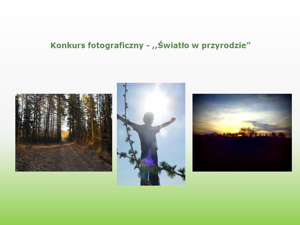 Konkurs fotograficzny -,,Światło w przyrodzie